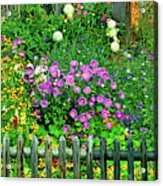 Close-up Of Flowers, Muren, Switzerland Acrylic Print