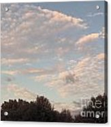 Clouds Above The Trees Acrylic Print