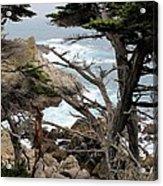 Coast Of California Acrylic Print