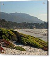 Coastal View - Ice Plant  Acrylic Print