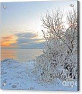 Cold Morning Acrylic Print