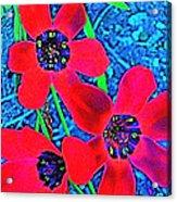 Color 1 Acrylic Print