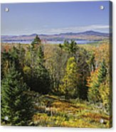 Colorful Fall Forest Near Rangeley Maine Acrylic Print