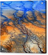 Colorful Runoff Acrylic Print