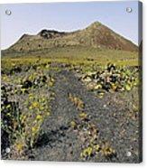 Corona Volcano On Lanzarote Acrylic Print