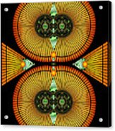 Cosmic Mitosis Acrylic Print