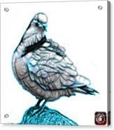 Cyan Pigeon Pop Art 5516 - Fs - Bb -  Modern Animal Artist James Acrylic Print