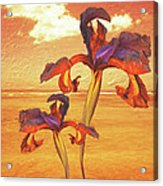 Dancing In The Sunset Acrylic Print