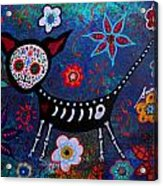 Day Of The Dead Chihuahua Acrylic Print