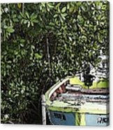 Docked By The Mangrove Trees Acrylic Print