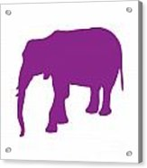 Elephant In Purple And White Acrylic Print