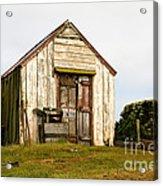 Falkland Island Farm Acrylic Print