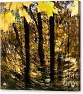 Fall Abstract Acrylic Print