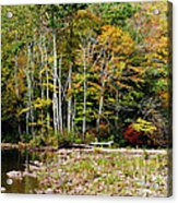 Fall Color River Acrylic Print by Thomas R Fletcher