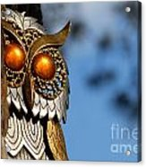 Faux Owl With Golden Eyes Acrylic Print