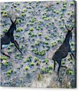Fish River Protected Area, Australia Acrylic Print
