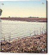 Flooded Farmland Acrylic Print