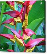 Flower 99 Acrylic Print