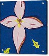 Flower Acrylic Print by Melissa Dawn
