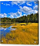 Fly Pond In The Adirondacks Acrylic Print by David Patterson