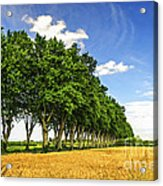 French Country Road Acrylic Print