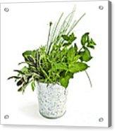 Fresh Herbs Acrylic Print by Elena Elisseeva