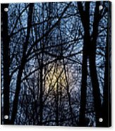 Frosted Winter Moon Acrylic Print