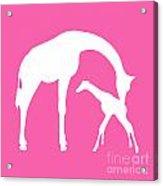 Giraffe In Pink And White Acrylic Print