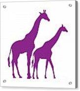 Giraffe In Purple And White Acrylic Print