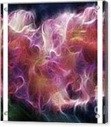 Gladiola Nebula Triptych Acrylic Print