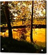 Golden Pond 3 Acrylic Print