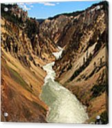 Grand Canyon Of Yellowstone Acrylic Print