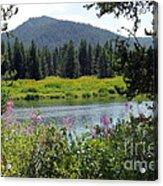Grand Teton Acrylic Print