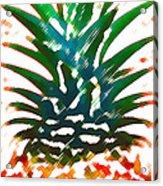 Hawaiian Pineapple Acrylic Print