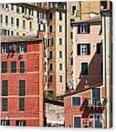 homes in Camogli Acrylic Print