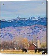 Hot Air Balloon Rocky Mountain Country View Acrylic Print