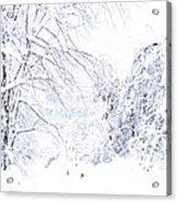 Hurricane Sandy Snow  Acrylic Print
