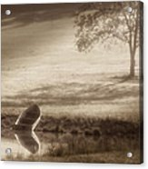 In Quiet Solitude Acrylic Print