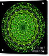 Kaleidoscope Of Glowing Circuit Board Acrylic Print by Amy Cicconi