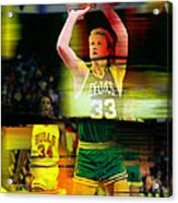 Larry Bird Acrylic Print
