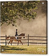 Last Ride Of The Day Acrylic Print