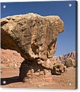 Lees Ferry Rock Formation Arizona Acrylic Print