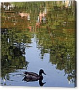 Living In Reflections Acrylic Print