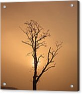 Loch Ard Glow Acrylic Print