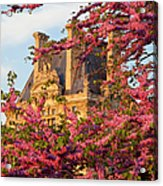 Louvre Blossoms Acrylic Print