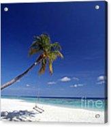 Maldives 06 Acrylic Print by Giorgio Darrigo