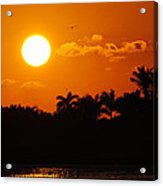 Marco Island Sunset Acrylic Print
