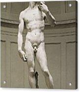 Michelangelo 1475-1564. David Acrylic Print by Everett