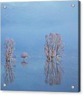 Misty Lake In Spring Acrylic Print