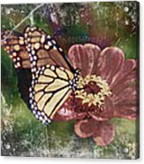 Monarch- Butterfly Mixed Media Photo Composite Acrylic Print